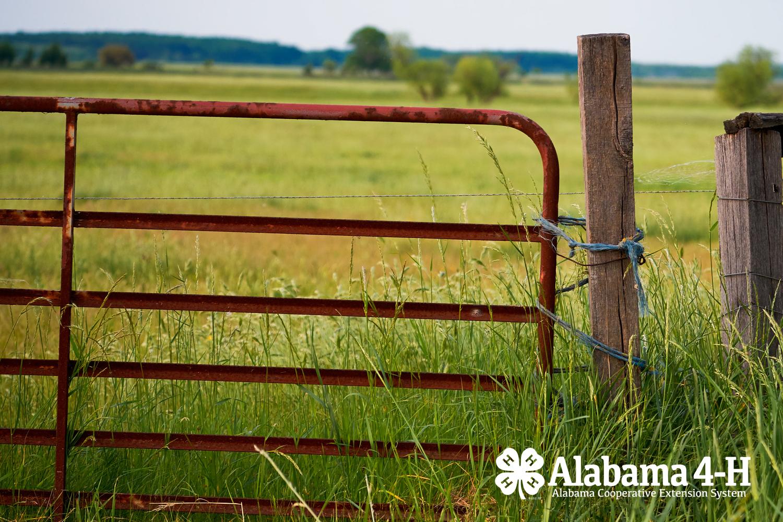 Alabama 4-H Farm Safety Day