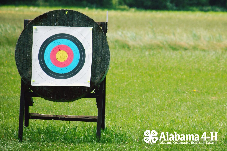 Alabama 4-H S.A.F.E. target