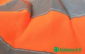 Alabama 4-H SAFE rifle program; image of safety vest