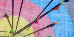 Alabama 4-H Archery target