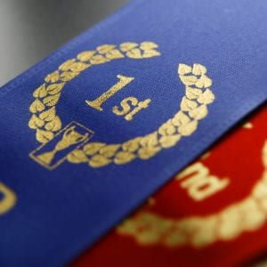 First place ribbon sitting on second and third place ribbons.