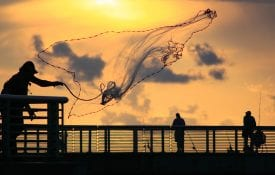 Fisherman casting a net during sunrise
