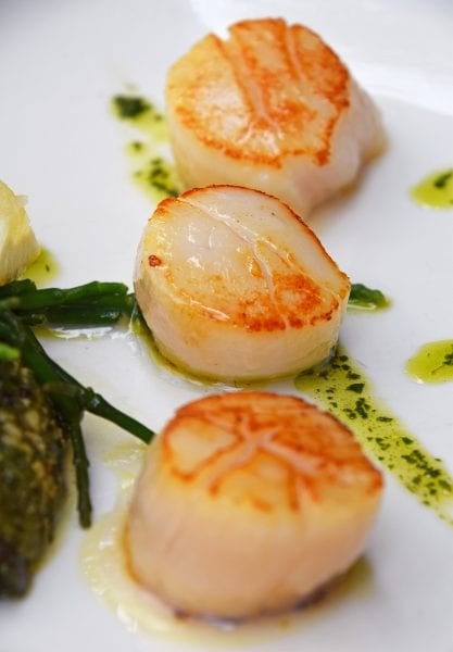 Close-Up Of Scallop Served In Plate