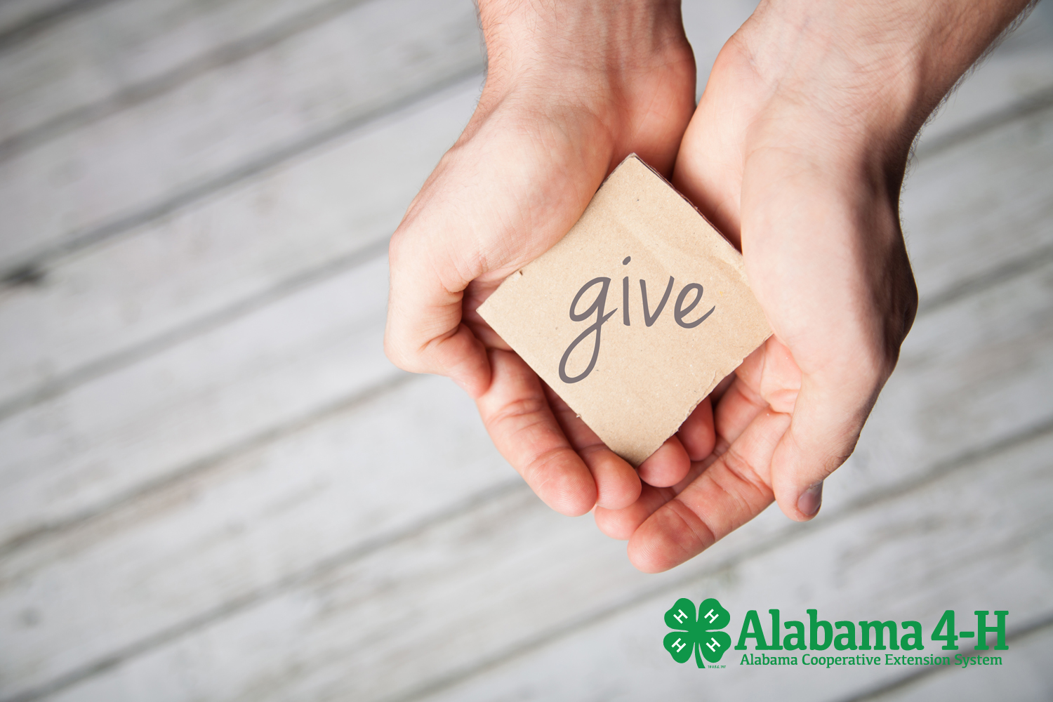 Alabama 4-H Foundation gifts-in-kind; person holding out hands