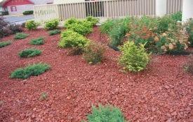 Image of Landscape with brick mulch and plants. Joe Murray, Treebio.com, Bugwood.org