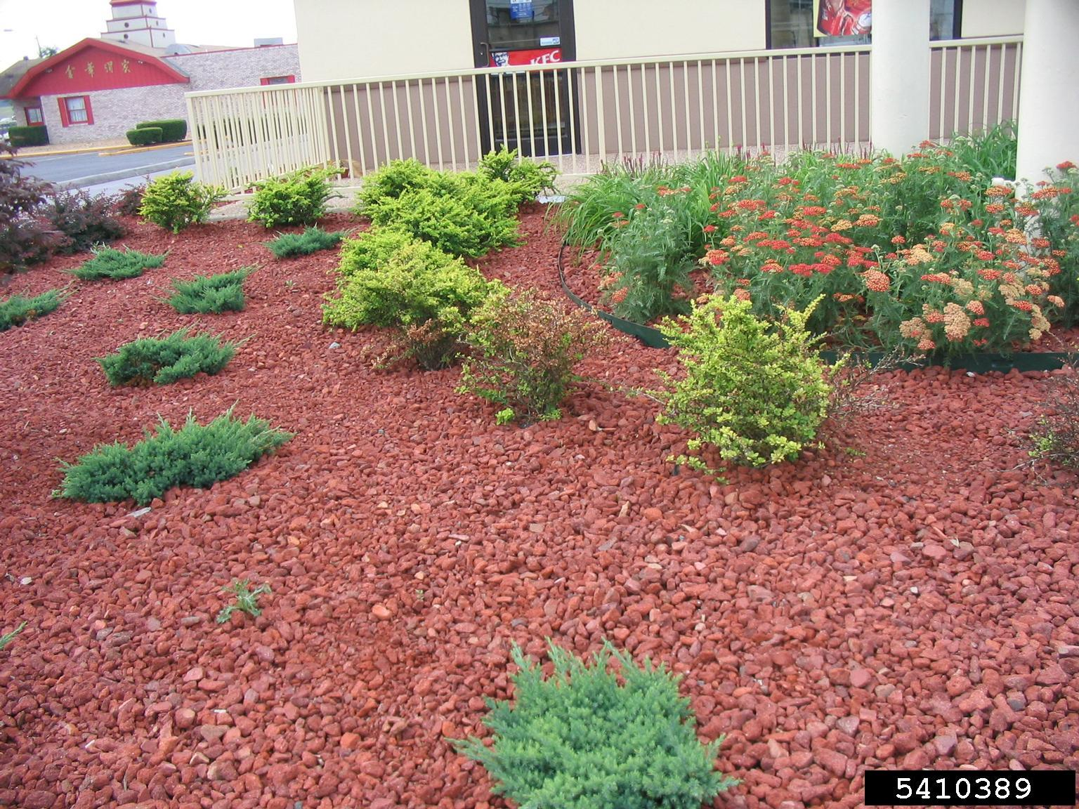 Landscape Planter And Setting Of Landscape Permit Information Slp