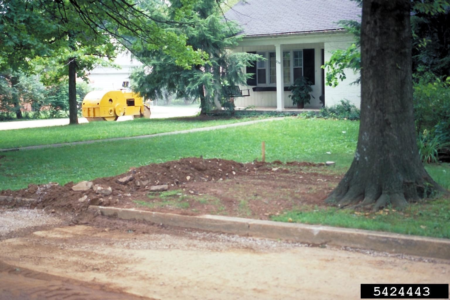 Sewer Line Excavation - John Hartman, University of Kentucky, Bugwood.org