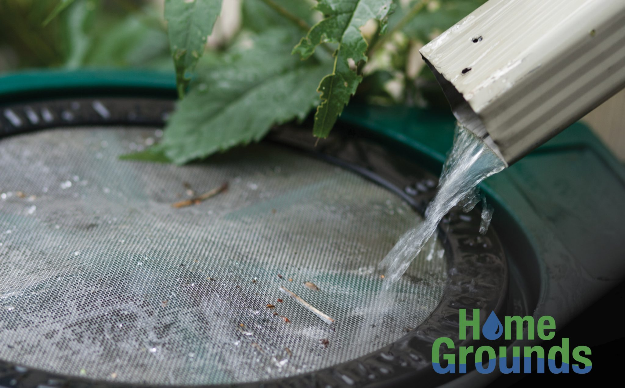 Close-up of water flowing into a rainwater harvesting barrel.