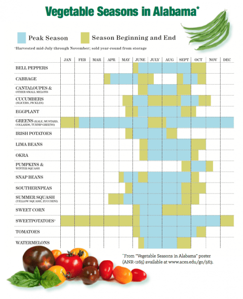 A chart of vegetable seasons in Alabama.