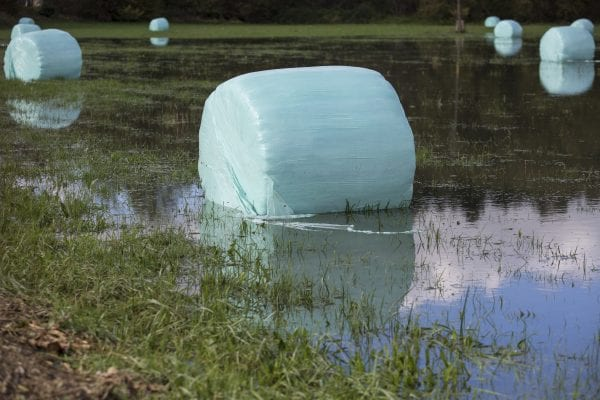 Hay bales in blueish plastic on a flooded field