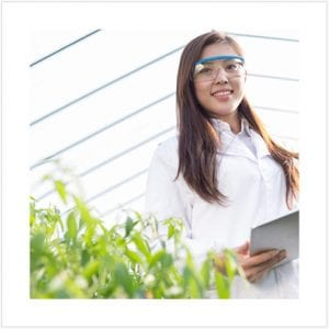 Scientist in a greenhouse looking over seedling progress