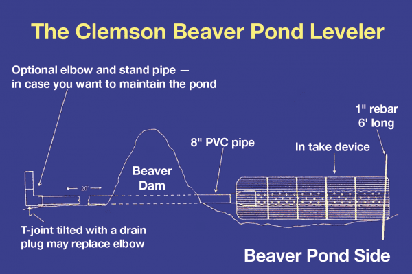 "The Clemson Beaver Pond Leveler. Optional elbow and stand pipe - in car you want to maintain the pond. T-Joint tilted with drain plug may replace elbow. Beaver Dam, 8"" PVC pipe. In take device. 1"" rebar 6' long Beaver Pond Side"