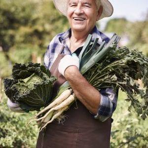 Older man in the garden