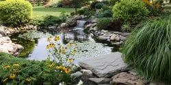 backyard garden pool