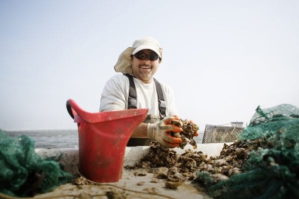 Man working at oyster farm