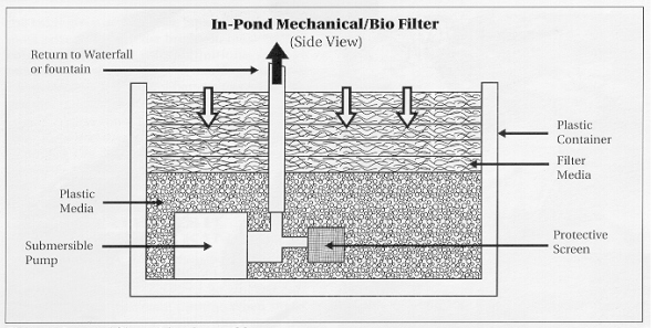In-pond filter with submersible pump.