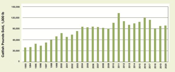 Historical Catfish Foodsize Sales in Alabama 1993–2020