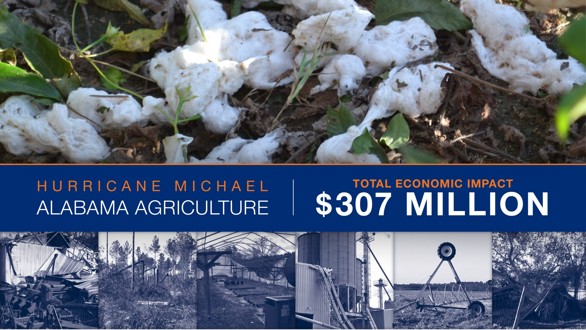 Total economic impact from hurricane michael