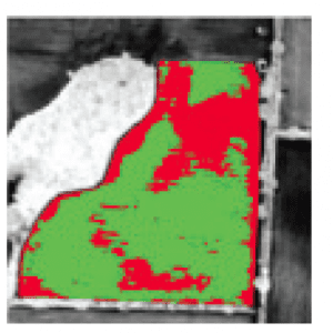 Figure 5c. Low and high biomass classes based on the NDVI image.