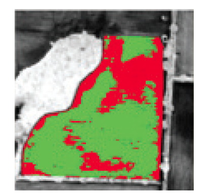 Low and high biomass classes based on the NDVI image