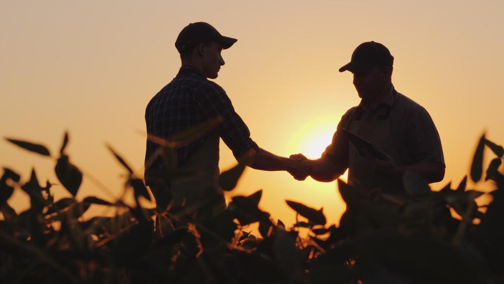 Two farmers shaking hands in a field.