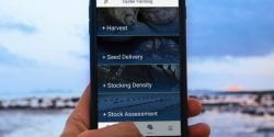 Person holding a smart phone displaying the Oyster Farming App.
