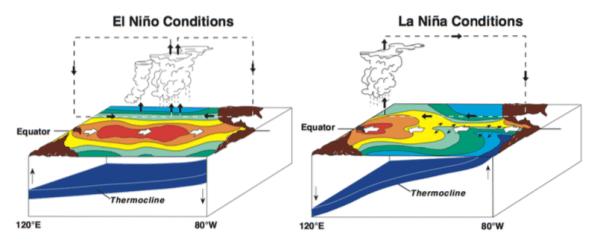Figure 1. Situations in Pacific Ocean during El Niño and La Niña of ENSO (Photo Source: NOAA)