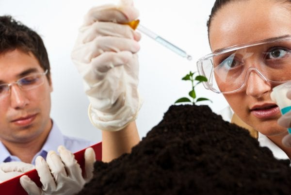Two scientists agricultural people working in laboratory,selective focus on woman face
