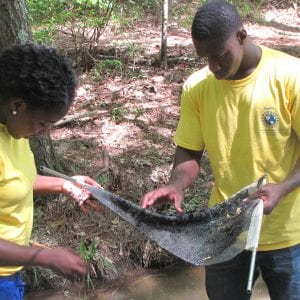 Two participants are standing in a stream and examining a net that they just collected samples with