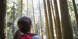 Alabama 4-H, Arbor Day, Girl looking up at tall trees in woods