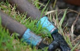 Garden Shears In Grass