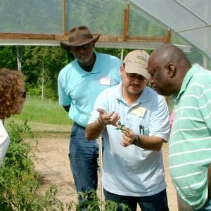 Group of people standing in a greenhouse.