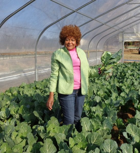 African American woman standing in a green house.