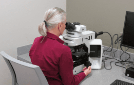 Marla Faver working with a microscope at the Gulf Shores Diagnostic Lab.