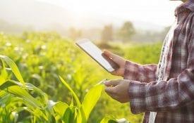 Farmer with tablet