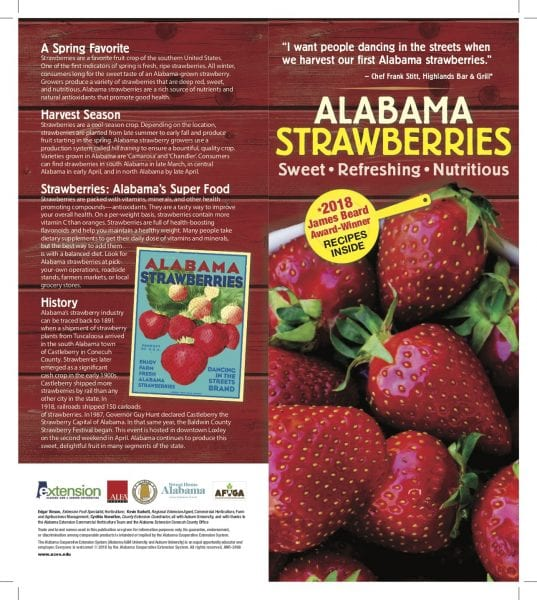 Strawberry brochure