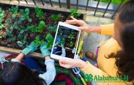Alabama 4-H Grows participation
