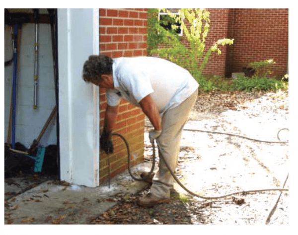 Man spraying for termites