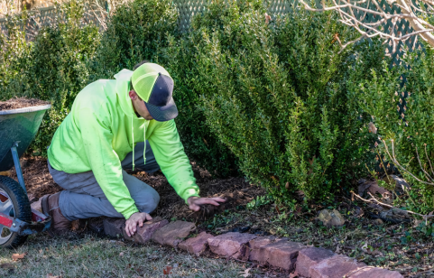 A man applying mulch to a winter gardening bed.