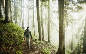Man hiking along trail in forest on foggy morning