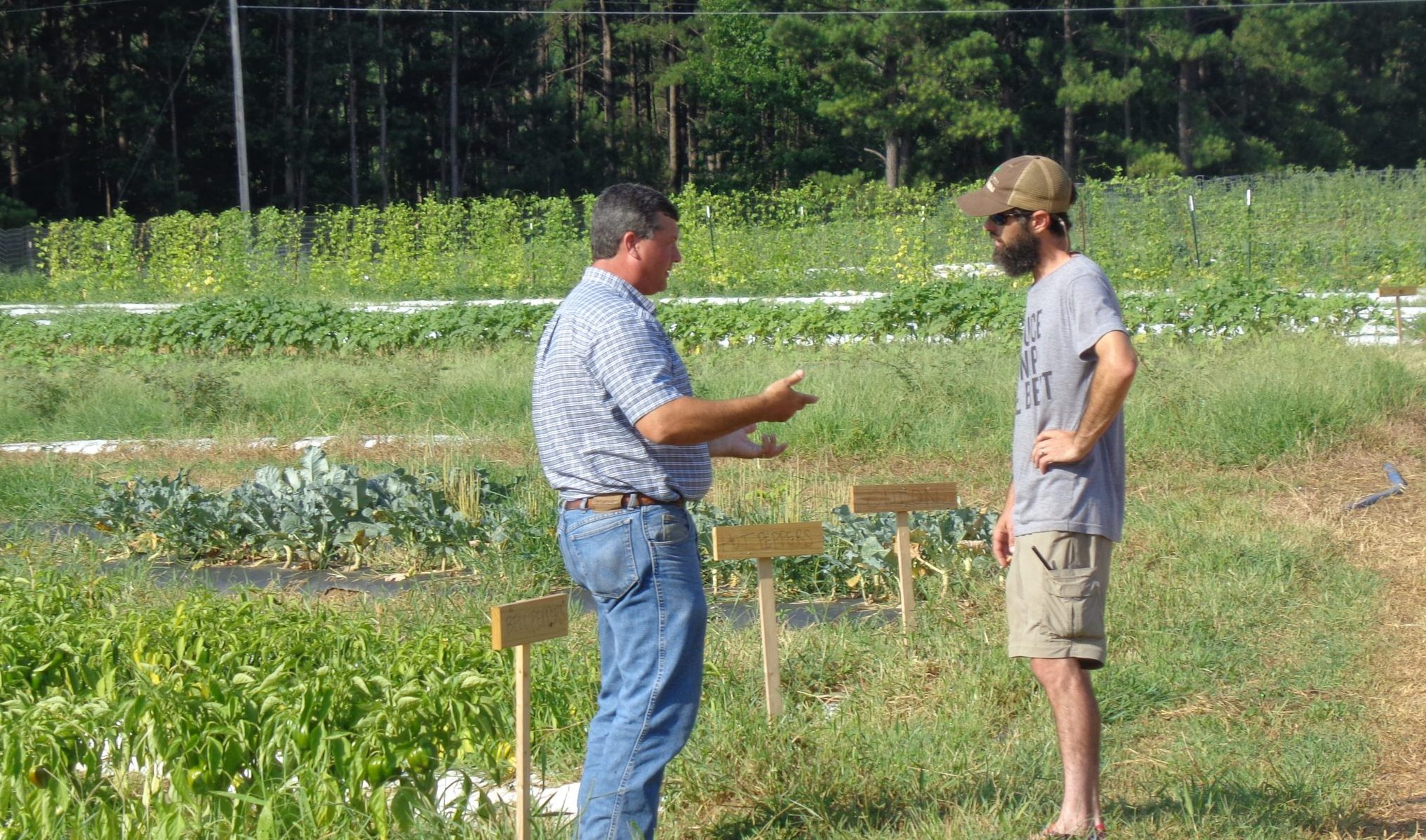 Regional Extension Agent, Chip East, helps a local farmer about his crops.