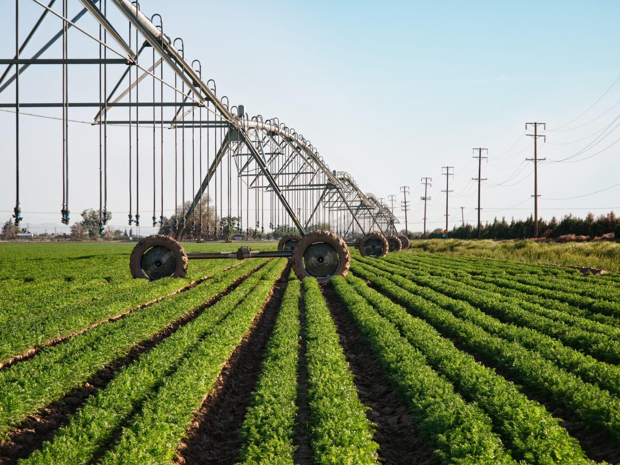 Center pivot irrigation with drop sprinklers over leaf crop agriculture in Antelope Valley, Mojave Desert, California.