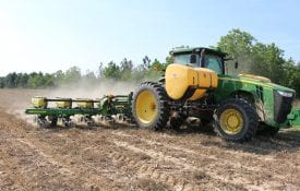 planting cotton in dry conditions