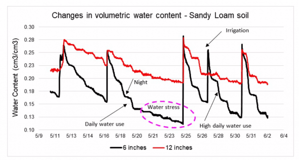 Changes in Volumetric Water Content