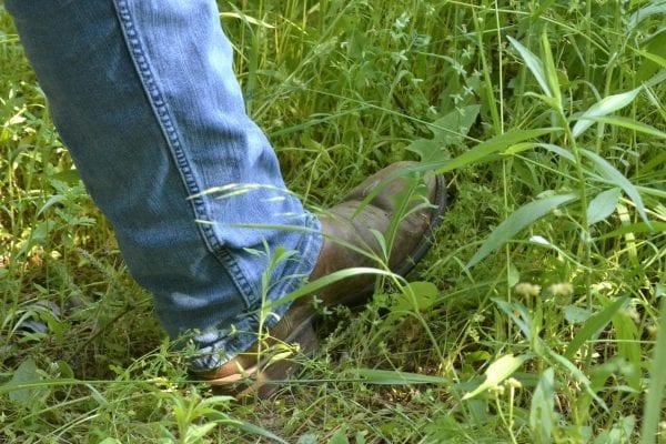 A man walking through tall grass.