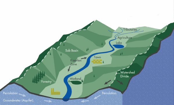 Illustration of a watershed