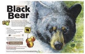 Alabama's Black Bear Poster