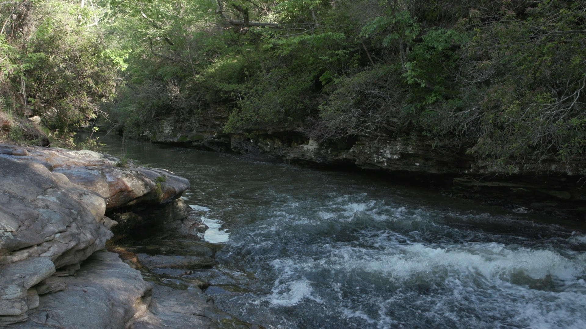 Alabama stream