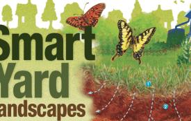 Smart Yard Landscapes