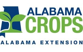Alabama Crops Logo
